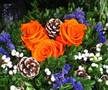 three orange roses, with pinecones