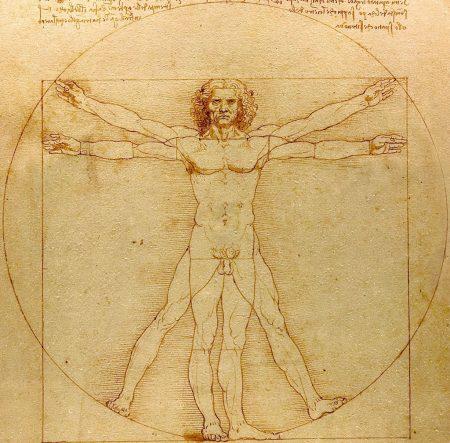 Vitruvian Man: penis at center of square